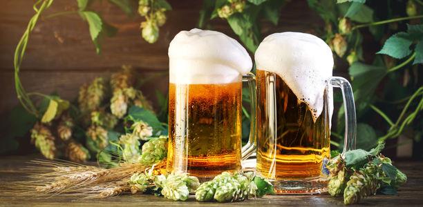Inhaltsstoffe Bier
